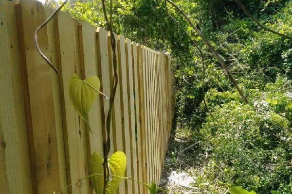 Board On Board Wood Privacy Fence